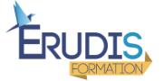 Logo Erudis Formation