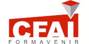 Logo CFAI 74