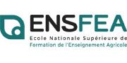 Logo ENSFEA