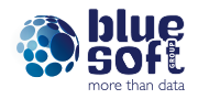 Logo BLUE SOFT GROUP