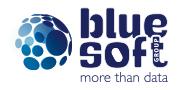 Logo BLUE SOFT GROUP