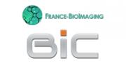 Bordeaux Imaging Center Stage Alternance